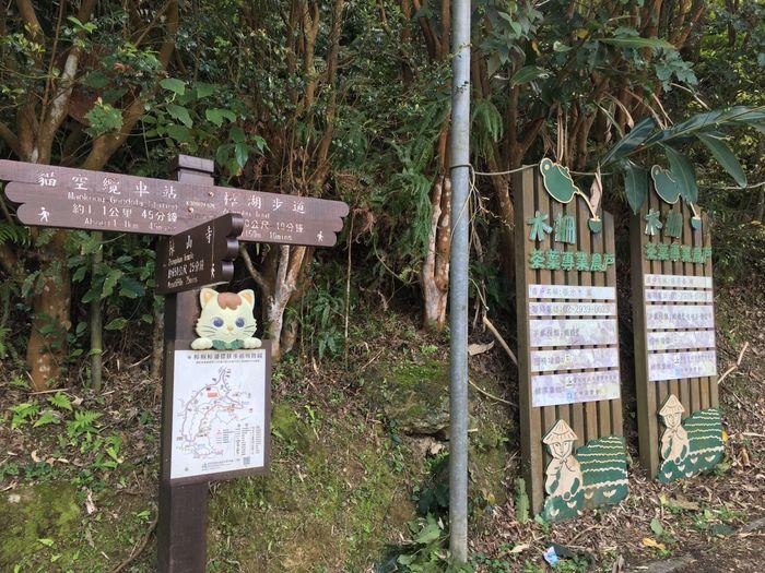 往樟湖步道
