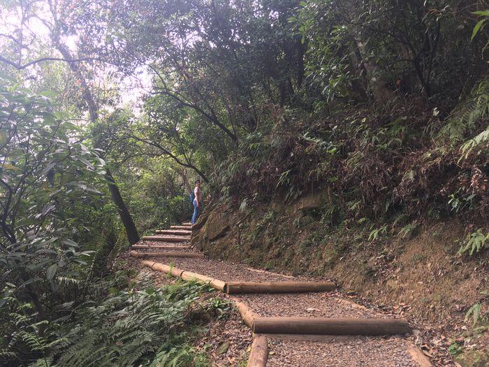 劍潭親山步道