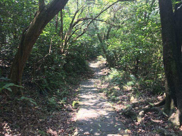 大崙尾山步道