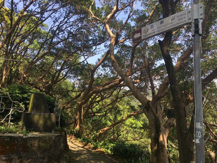 忠勇山越嶺步道口