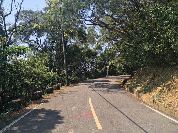 金龍產業道路