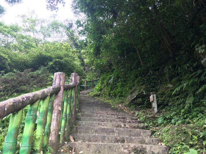 台北大縱走第七段,茶展中心步道