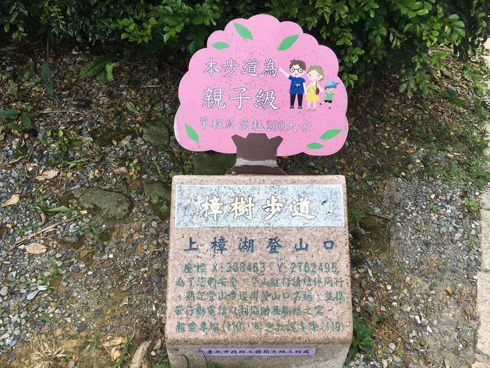 台北大縱走第七段,樟樹步道
