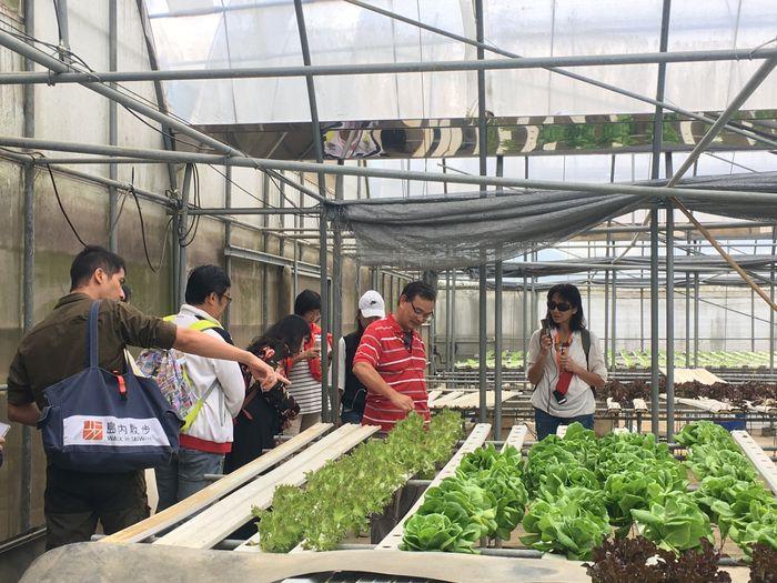 新竹秘境 綠谷生菜沙拉園