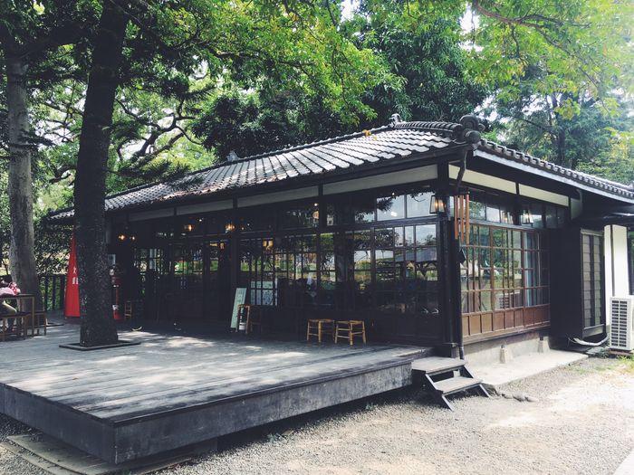 新竹一日遊 一個人  新竹公園