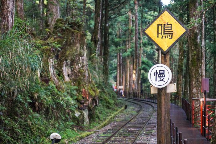 太平山一個人 交通