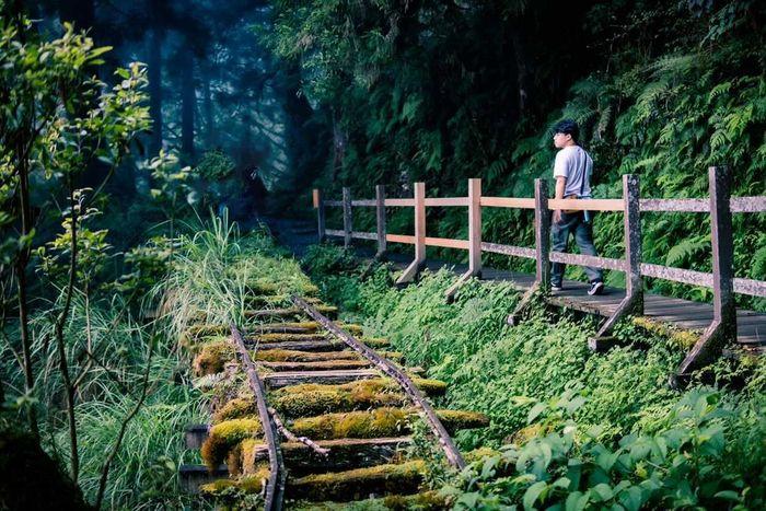 太平山一個人 見晴懷古步道