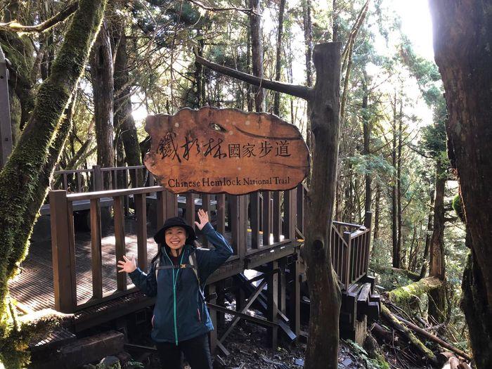 太平山一個人 鐵杉林步道